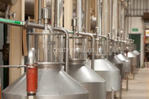 ティーツリーオイルの蒸留装置